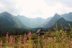 Hala Gąsienicowa, High Tatras, Poland